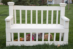 Cute little girl playing hide and seek. Lying on the green grass hiding under a white painted slatted wooden garden bench Stock Photos