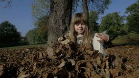 Cute little girl playing outdoors in autumn park. stock footage