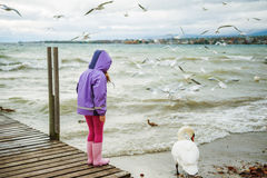 Cute little girl playing outdoors. Next to lake Geneva on a cold weather, feeding birds in winter time,  back view Stock Photo