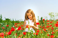 Cute little girl playing in red poppies field summer day, beauty Stock Image