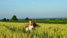 Cute little girl playing in wheat field sunny day, slow motion stock video footage
