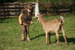 Cute little girl plays with goat Royalty Free Stock Photography