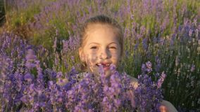 Cute little girl plays lavender bushes in nature stock video footage