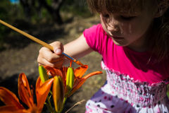 Cute little girl plays with paints for drawing. Colors of nature Royalty Free Stock Images