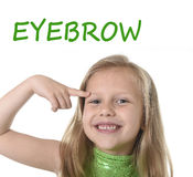 Cute little girl pointing her eyebrow in body parts learning English words at school Royalty Free Stock Image
