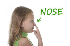 Cute little girl pointing her nose in body parts learning English words at school stock image