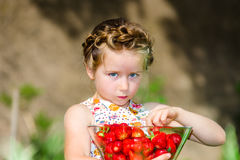 Cute little girl posing with fresh red strawberry in the sunny g Stock Images