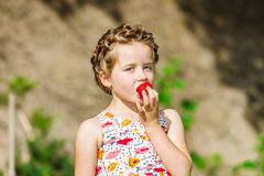 Cute little girl posing with fresh red strawberry in the sunny g Royalty Free Stock Images