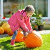 Cute little girl and a pumpkin Stock Photo