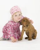 Cute little girl with puppy Stock Images