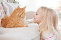 Cute little girl with red cat at home Royalty Free Stock Photos