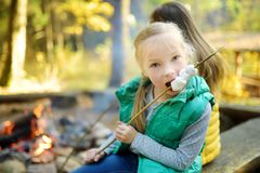 Cute little girl roasting marshmallows on stick at bonfire. Child having fun at camp fire. Camping with children in fall forest. Family leisure with kids at royalty free stock photos