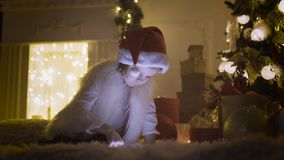 Girl with tablet near Christmas tree stock video