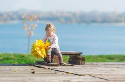 Cute little girl sits on a wood bench with bouquet of maple leaves against the background of an autumn river in park Stock Image