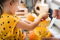 Cute little girl sitting on kitchen table, helping her father to carve large pumpkin, smiling. Halloween family background. stock image