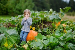 Cute little girl sitting on a pumpkin Stock Images