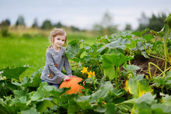Cute little girl sitting on a pumpkin Royalty Free Stock Images