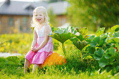 Cute little girl sitting on a pumpkin Stock Photo