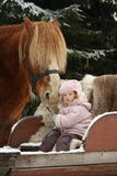 Cute little girl sitting in the sledges and big palomino draught Royalty Free Stock Photography