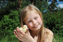 Cute little girl with a small chicken Royalty Free Stock Photo