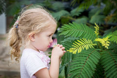 Cute little girl smelling a flower Stock Photo