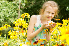 Cute little girl smelling a yellow flower Royalty Free Stock Images