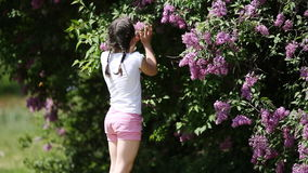 Cute little girl sniffing violet flowers in the park in sunshine summer day. stock footage