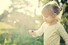 Cute little girl in the sunshine. Stock Images