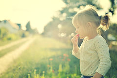 Cute little girl in the sunshine. Royalty Free Stock Images