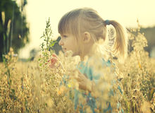 Cute little girl in the sunshine. Royalty Free Stock Image