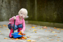 Cute little girl sweeping dry leaves on autumn Stock Images
