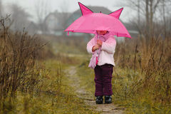 The cute little girl under an umbrella in the fall Stock Photo