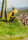 Cute little girl in vineyards, spring sunny day Stock Images