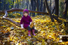 Cute little girl walk in the woods Stock Photography