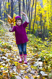 Cute little girl walking in autumn forest Royalty Free Stock Photo