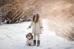 Cute little girl and puppy stock photo