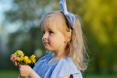 Cute little girl walking in the park with dandelion flowers. Smelling, mother`s day concept Royalty Free Stock Photos