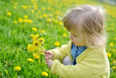 Little girl walking in the park, springtime. Cute little girl walking in the park with dandelion flowers, spring time, sunny day Stock Images