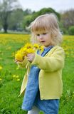 Little girl walking in the park, springtime. Cute little girl walking in the park with dandelion flowers, spring time, sunny day Stock Photography