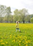 Little girl walking in the park, springtime. Cute little girl walking in the park with dandelion flowers, spring time, sunny day Royalty Free Stock Images