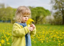 Little girl walking in the park, springtime. Cute little girl walking in the park with dandelion flowers, spring time, sunny day Stock Photo