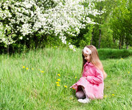 Cute little girl walking in the park Royalty Free Stock Photo