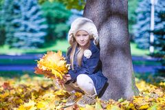 Cute little girl at warm sunny autumn day outdoor Stock Images