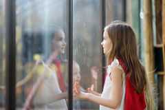 Cute little girl watching animals in the zoo on summer day. Child watching zoo animals through the window. Stock Photography