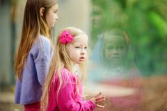 Cute little girl watching animals at the zoo on warm and sunny summer day. Child watching zoo animals through the window. Stock Photo