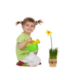 Cute little girl watering the flower Stock Image