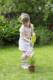 Cute little girl watering flowers in garden Stock Photography