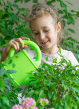 Cute little girl watering flowers. Royalty Free Stock Photography