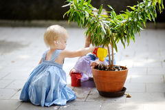 Cute little girl watering a plant Royalty Free Stock Images