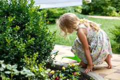 Cute little girl watering plants in the garden. stock photography